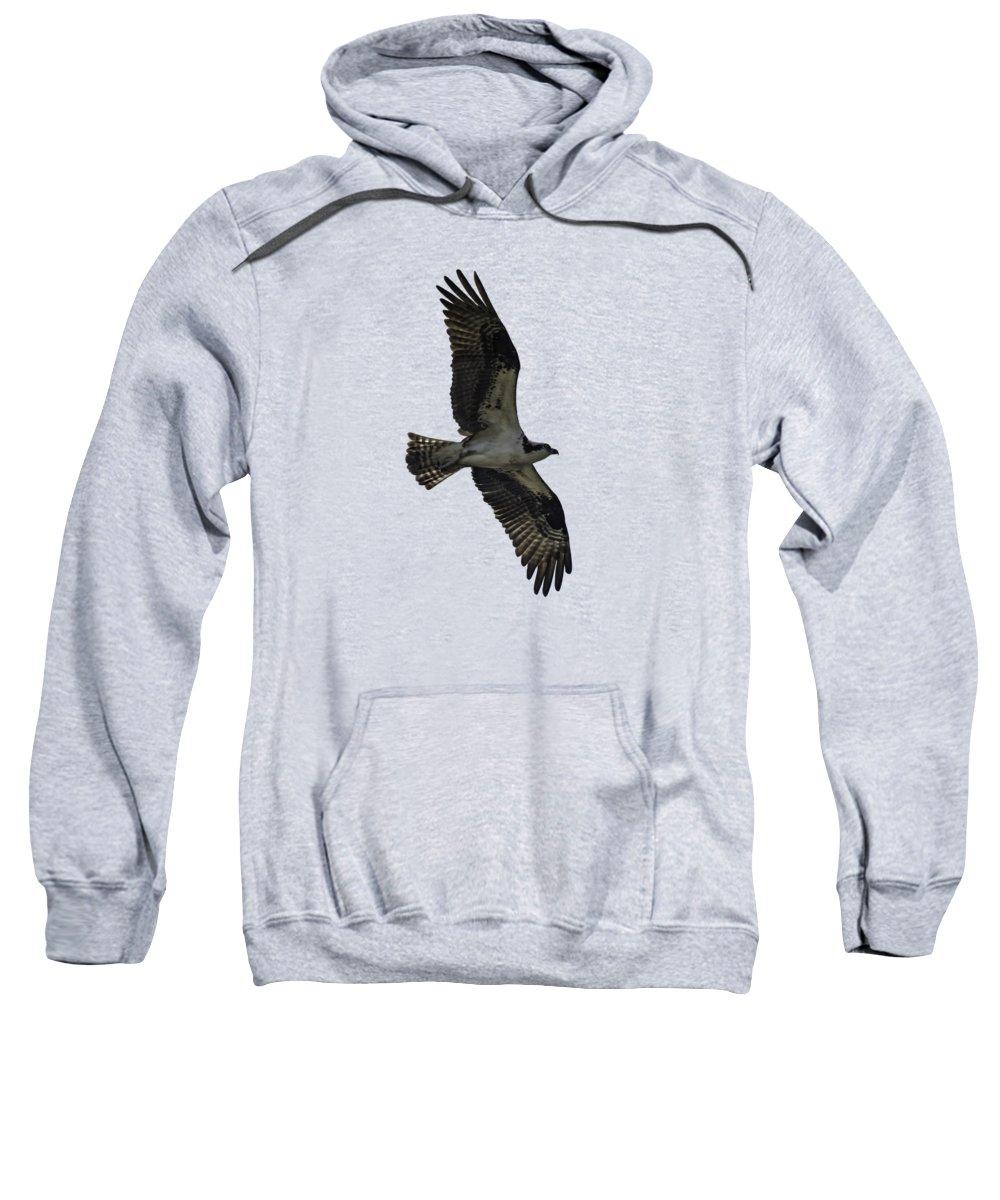 Buy Online Photographs Hooded Sweatshirts T-Shirts