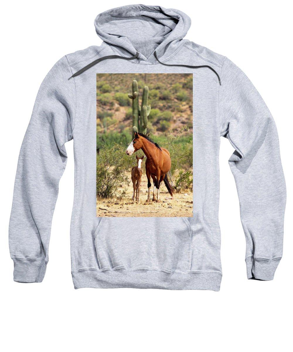 Arizona Sweatshirt featuring the photograph Pretty Mama by Cathy Franklin
