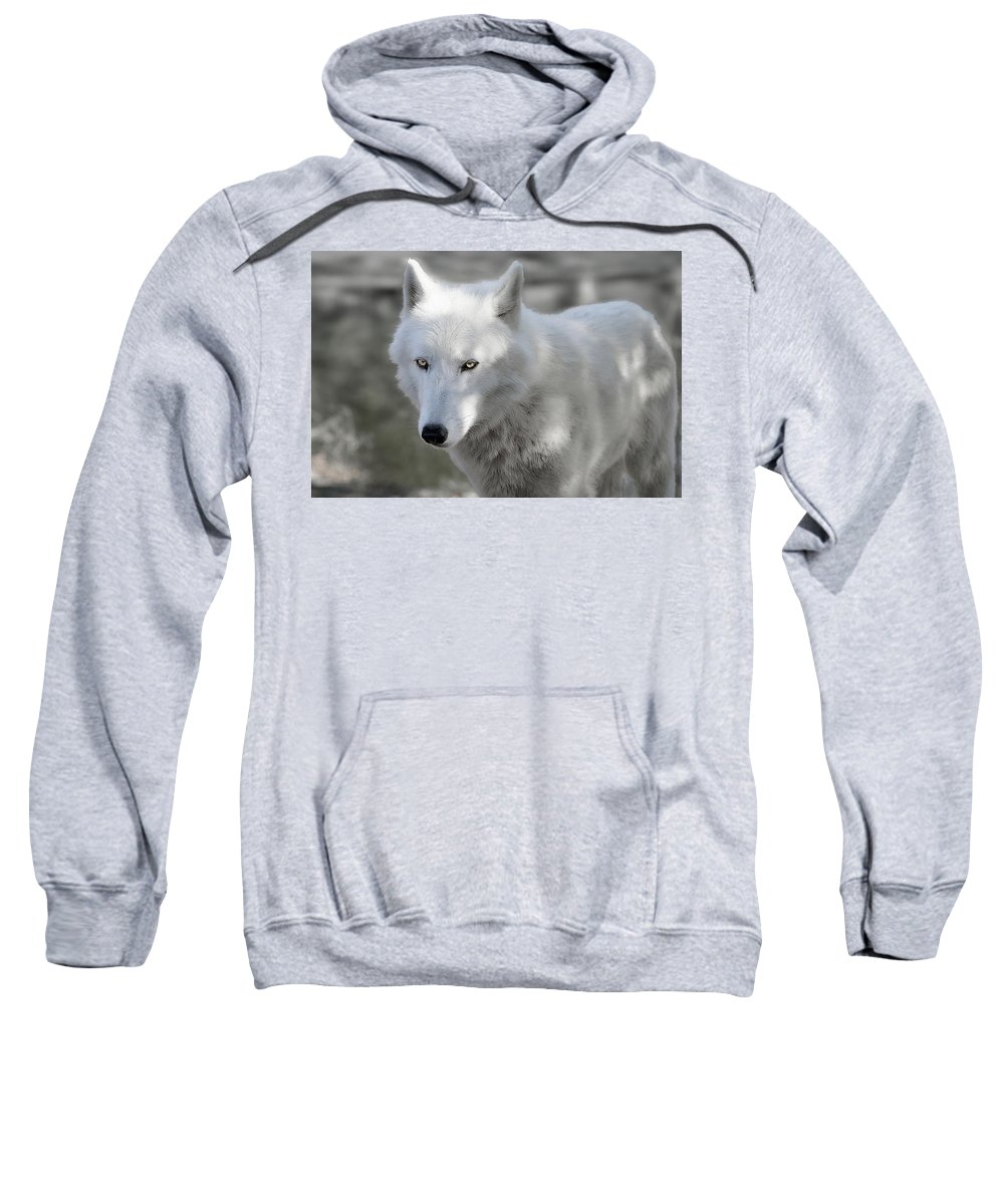 Wolf Sweatshirt featuring the photograph Snow Wolf by Jeannee Gannuch
