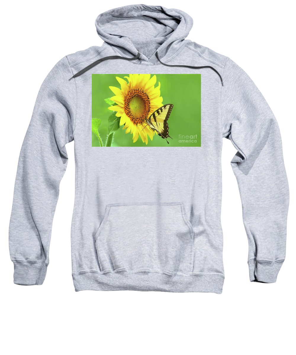 Sunflower Sweatshirt featuring the photograph Sunflower And Swallowtail by Regina Geoghan
