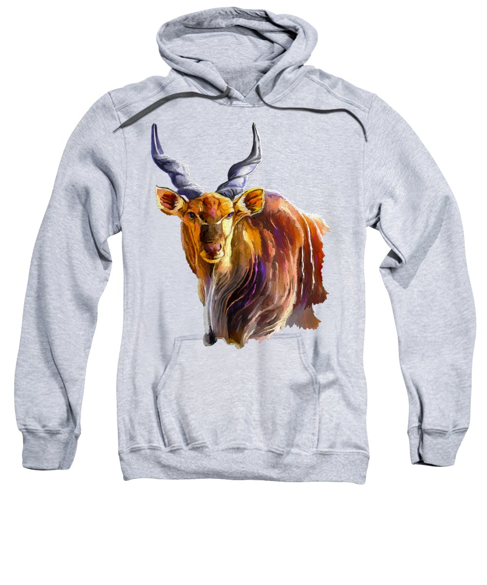 Colorado Wildlife Paintings Hooded Sweatshirts T-Shirts