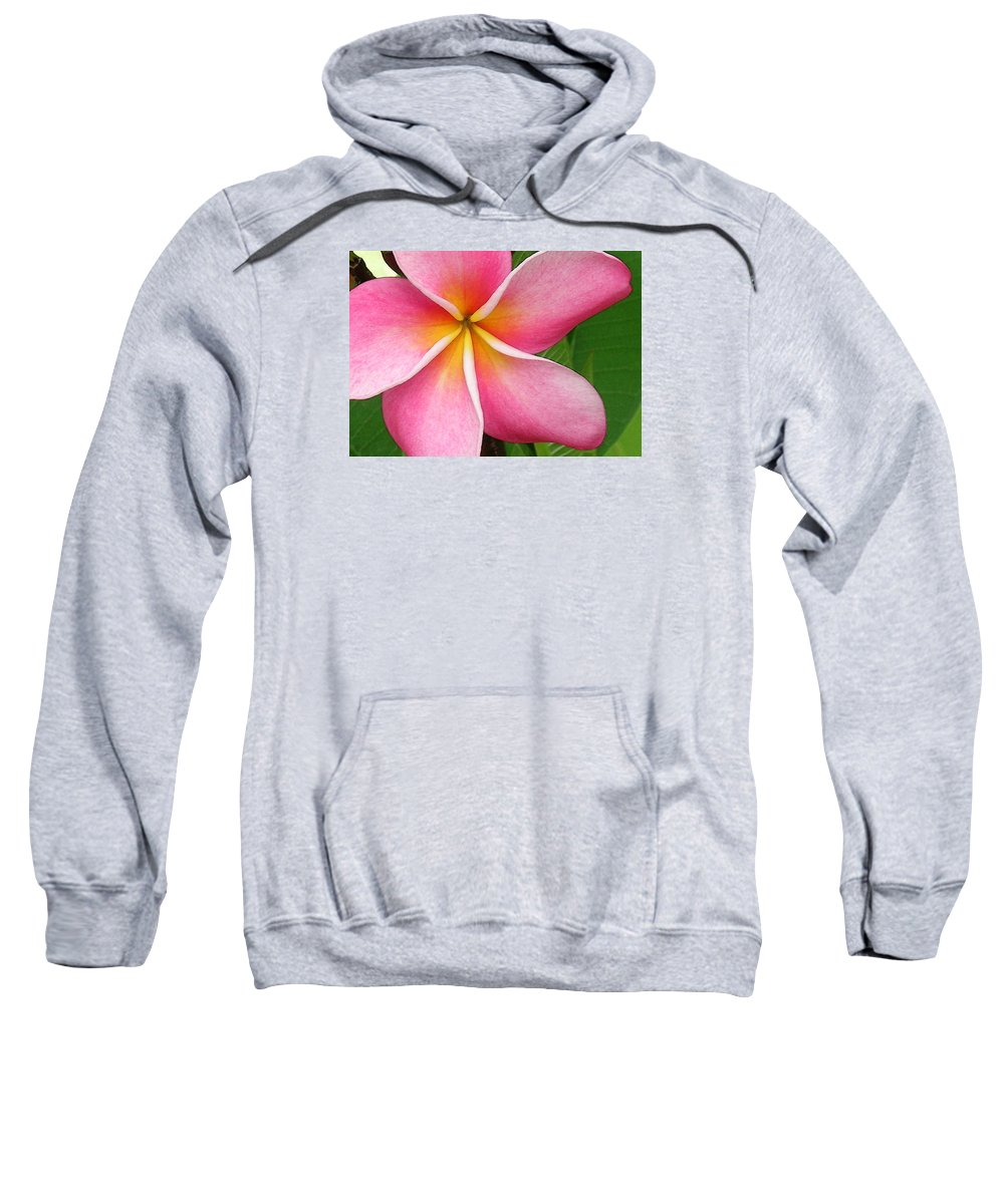 Hawaii Iphone Cases Sweatshirt featuring the photograph April Plumeria by James Temple