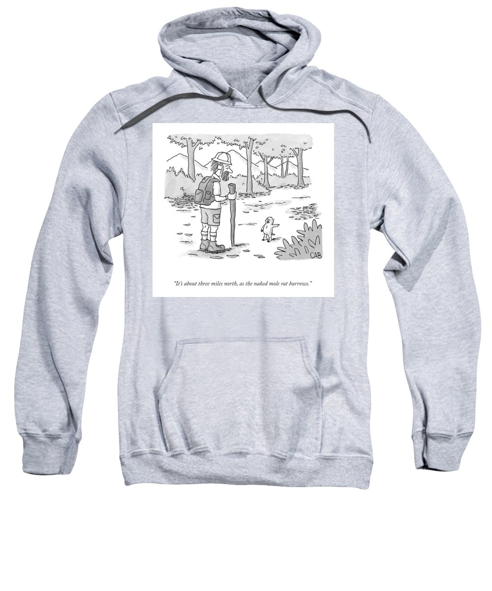 It's About Three Miles North Sweatshirt featuring the drawing As The Naked Mole Rat Burrows by Adam Cooper