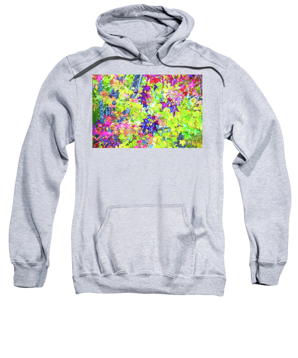 Autumn Leaves Sweatshirt featuring the photograph Autumn leaves by Sheila Smart Fine Art Photography