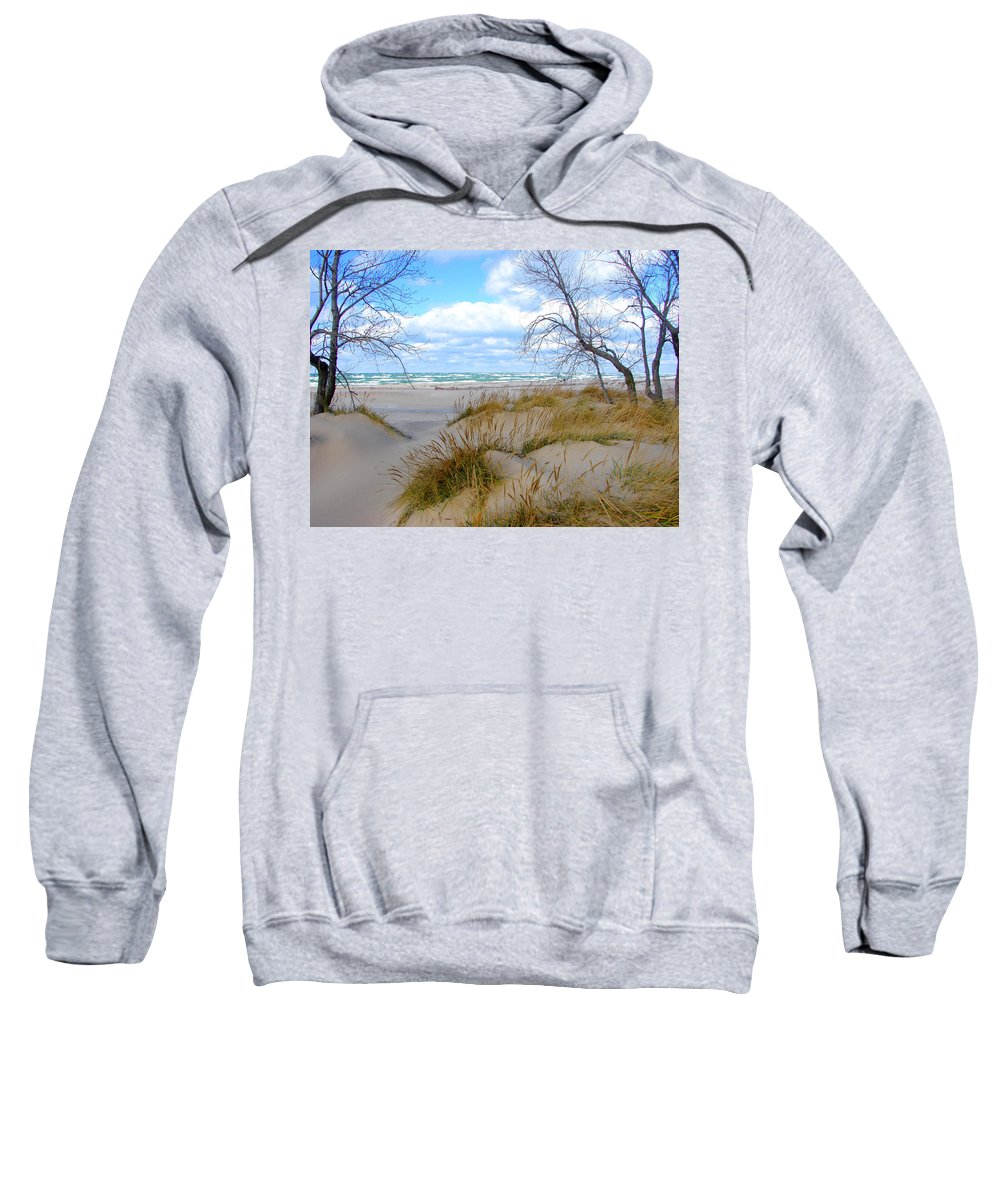 Trees Sweatshirt featuring the photograph Big Waves on Lake Michigan by Michelle Calkins