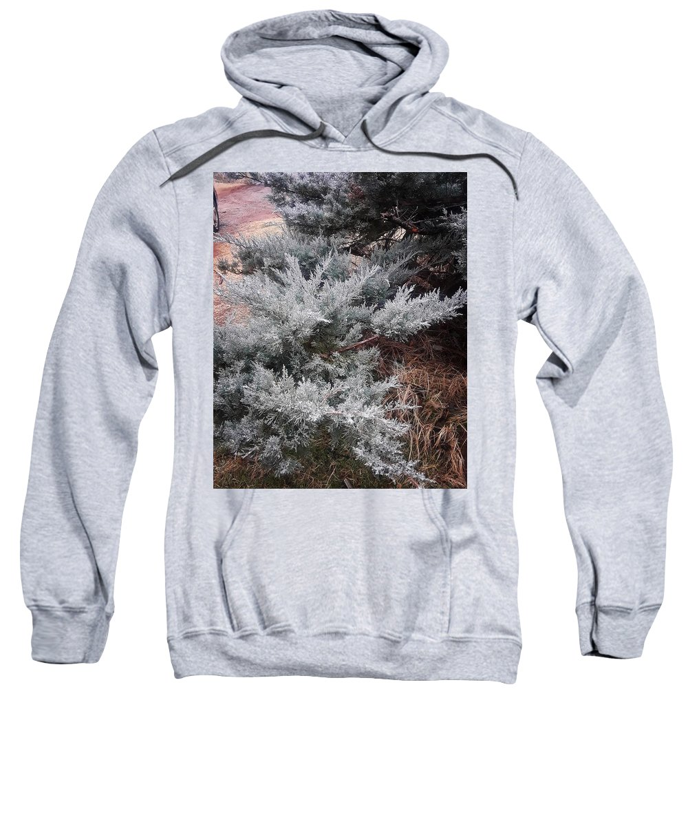 Scenery Sweatshirt featuring the photograph First Frost by Ariana Torralba