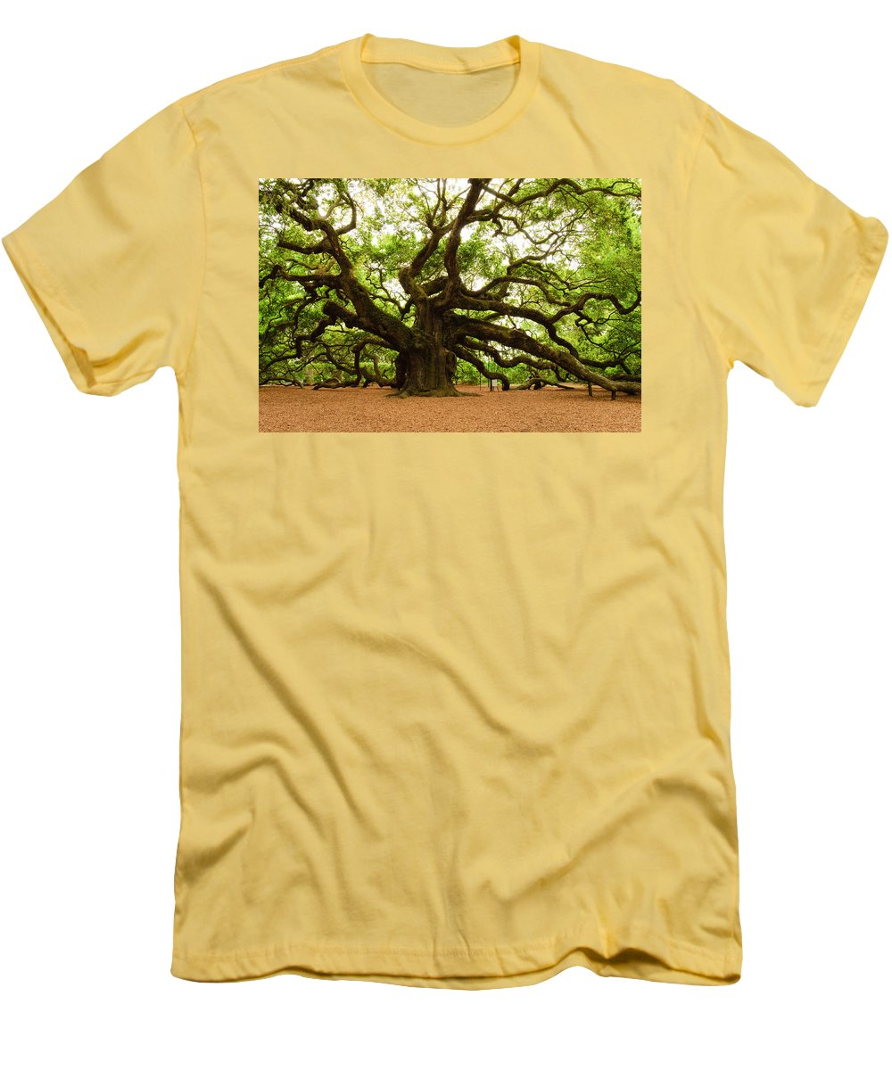 Tree Men's T-Shirt (Athletic Fit) featuring the photograph Angel Oak Tree 2009 by Louis Dallara