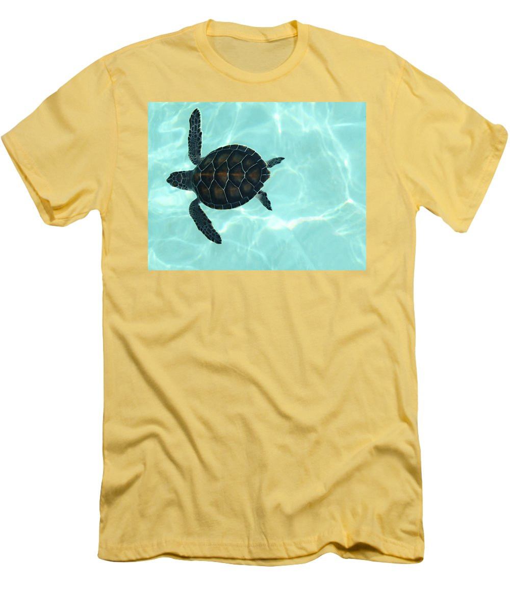 Baby Sea Turtle Men's T-Shirt (Athletic Fit) featuring the photograph Baby Sea Turtle by Ellen Henneke