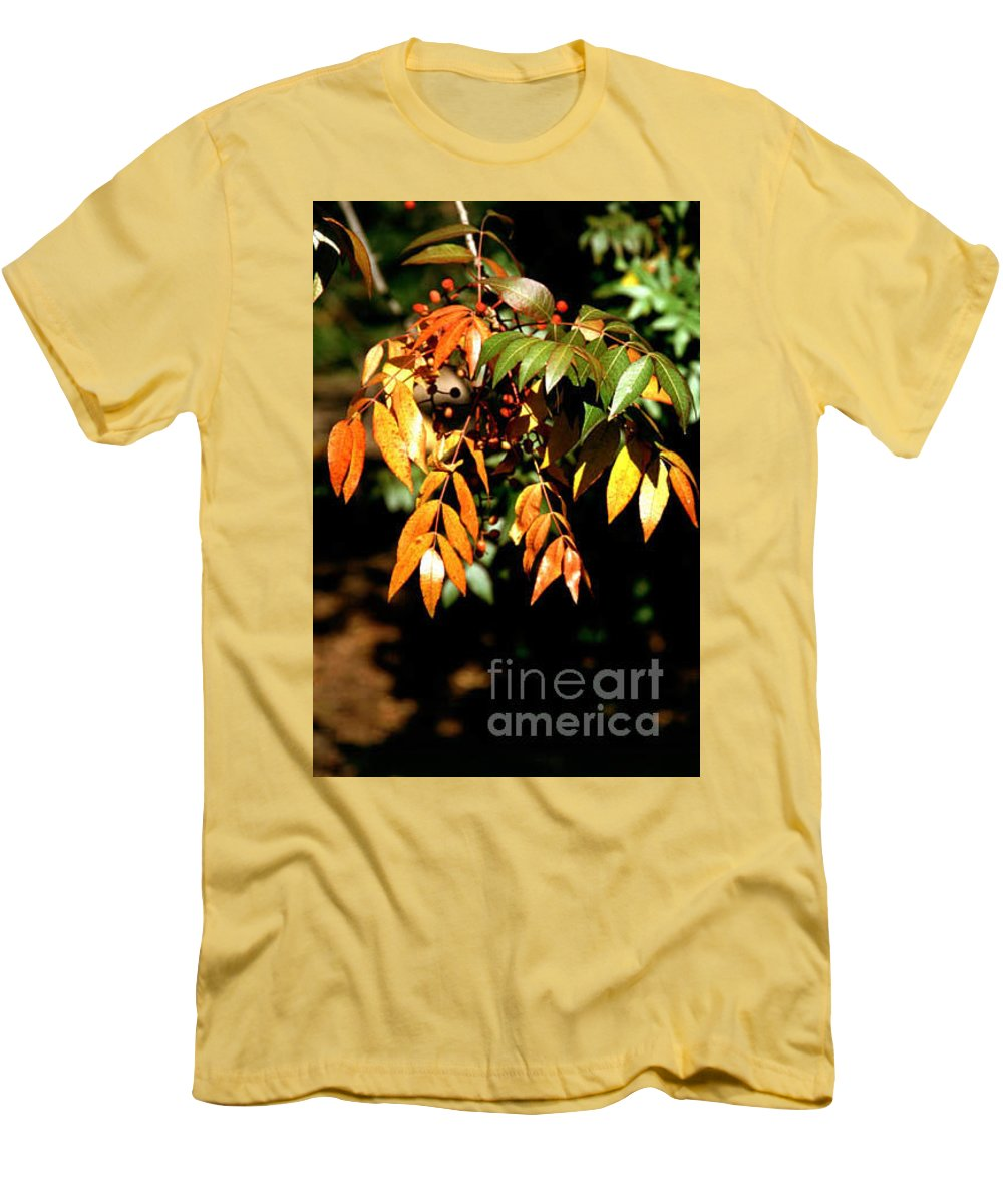 Fall Color Men's T-Shirt (Athletic Fit) featuring the photograph Fall Leaves by Kathy McClure