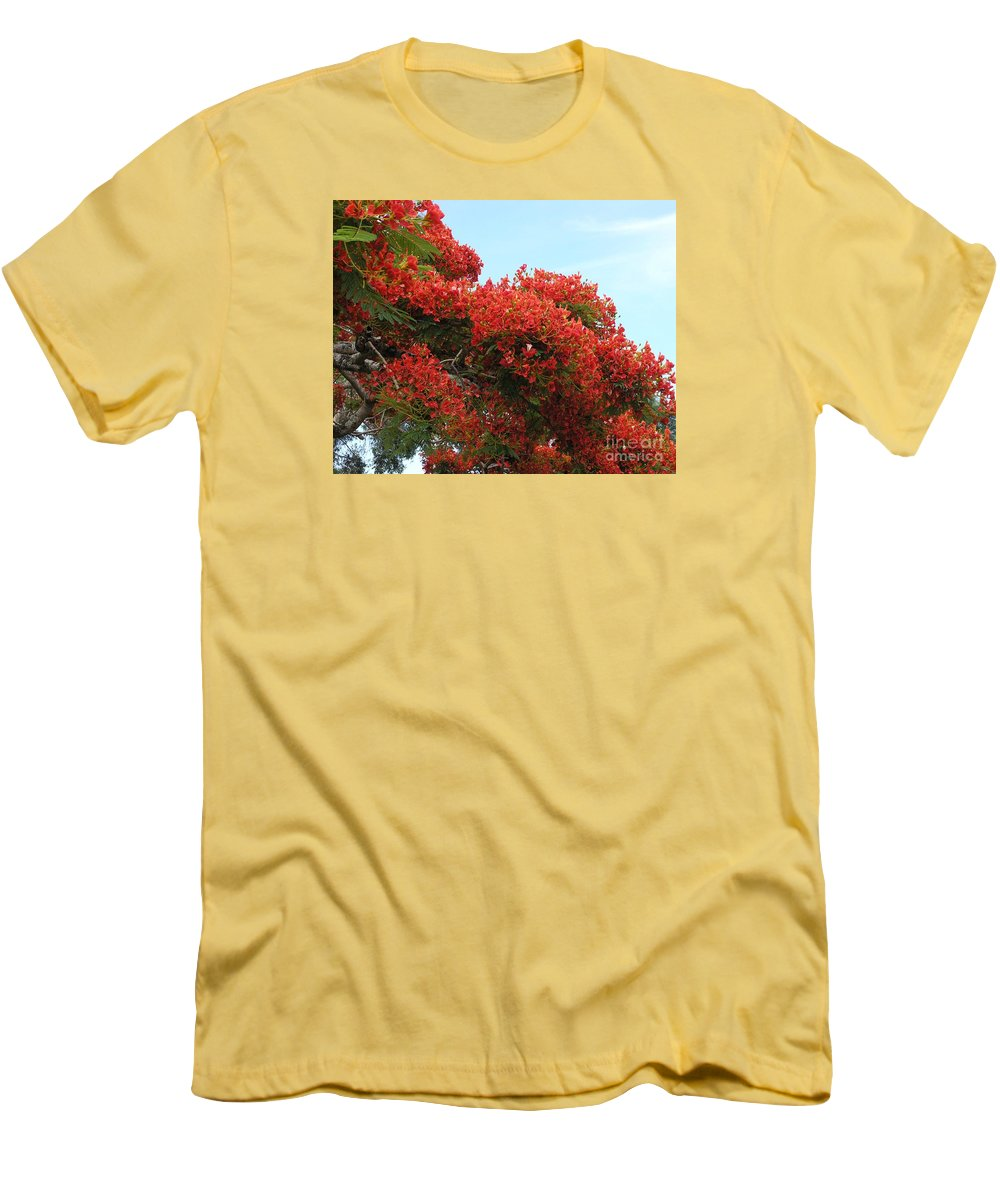 Trees Men's T-Shirt (Athletic Fit) featuring the photograph Royal Poinciana Branch by Mary Deal