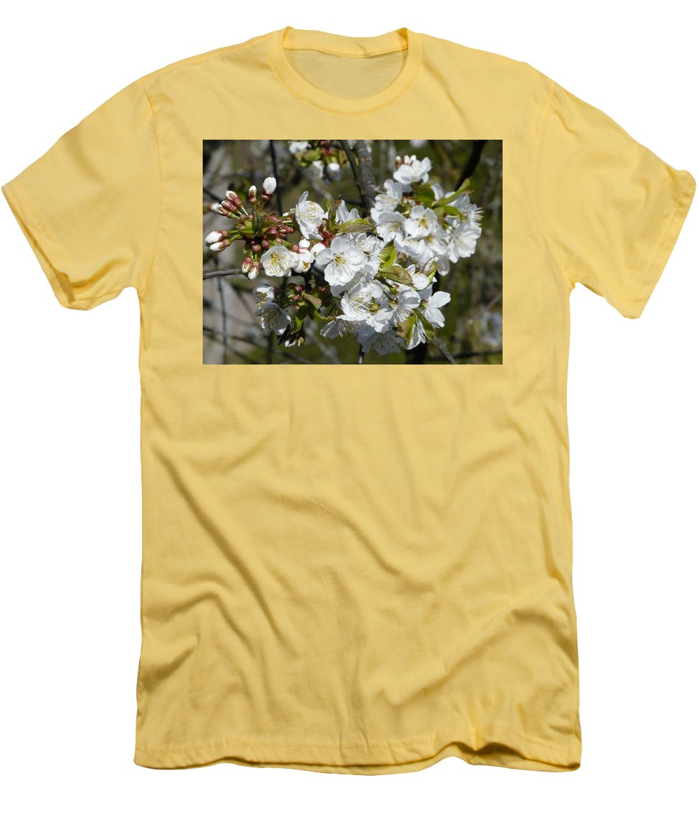 Cherry Men's T-Shirt (Athletic Fit) featuring the photograph Cherry Blossom by Valerie Ornstein