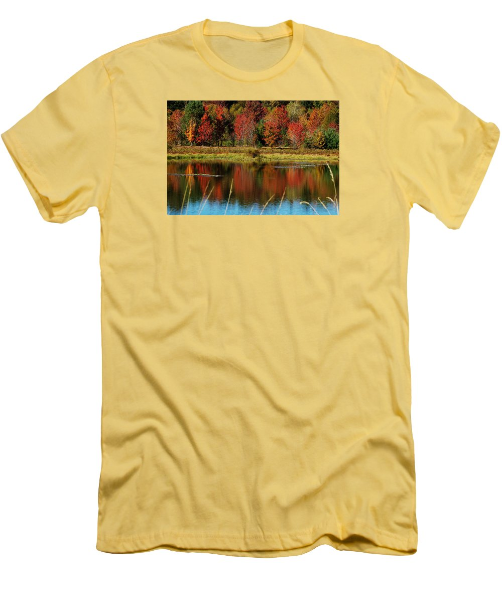 Autumn Men's T-Shirt (Athletic Fit) featuring the photograph Fall Splendor by Linda Murphy