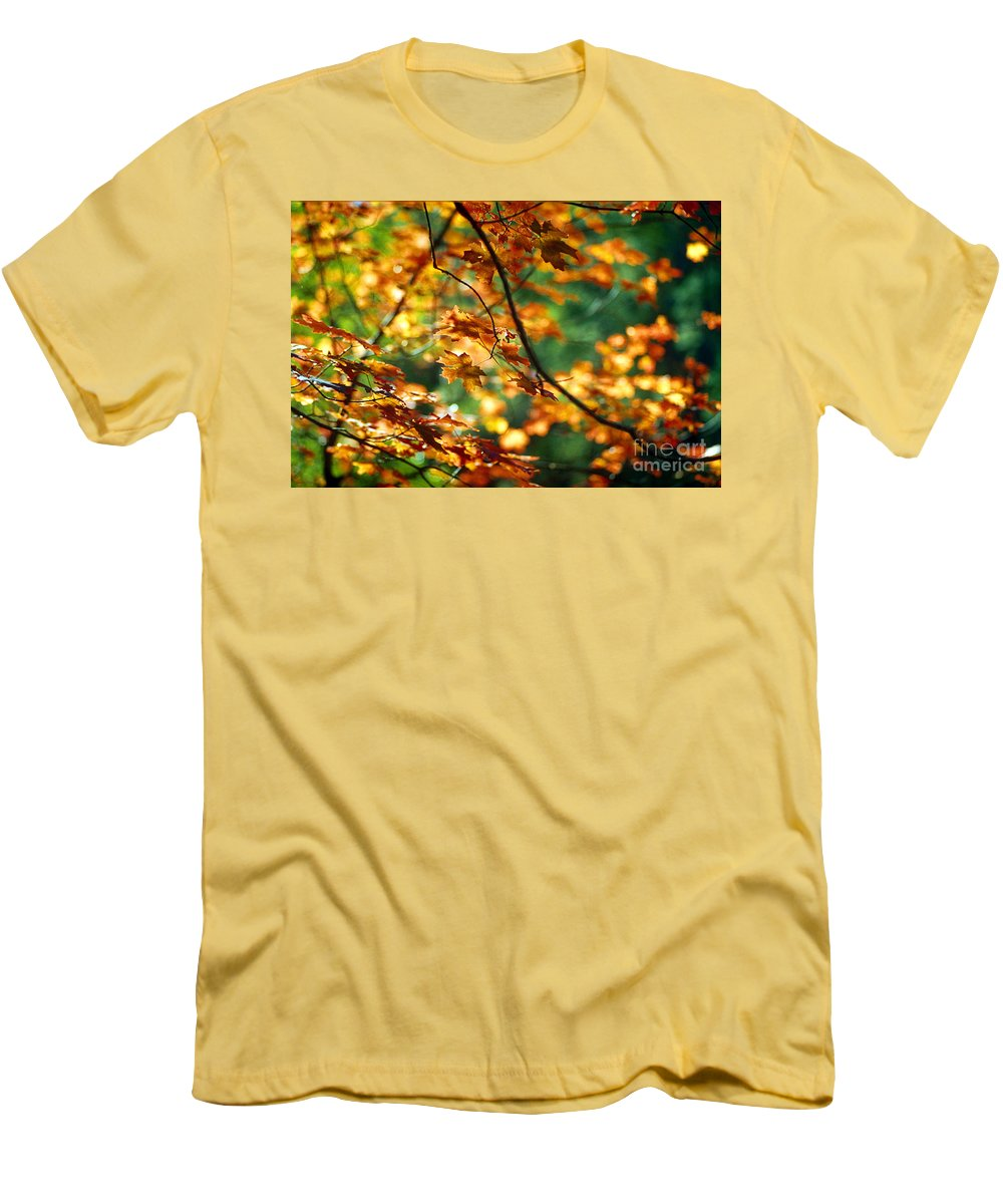 Fall Color Men's T-Shirt (Athletic Fit) featuring the photograph Lost In Leaves by Kathy McClure