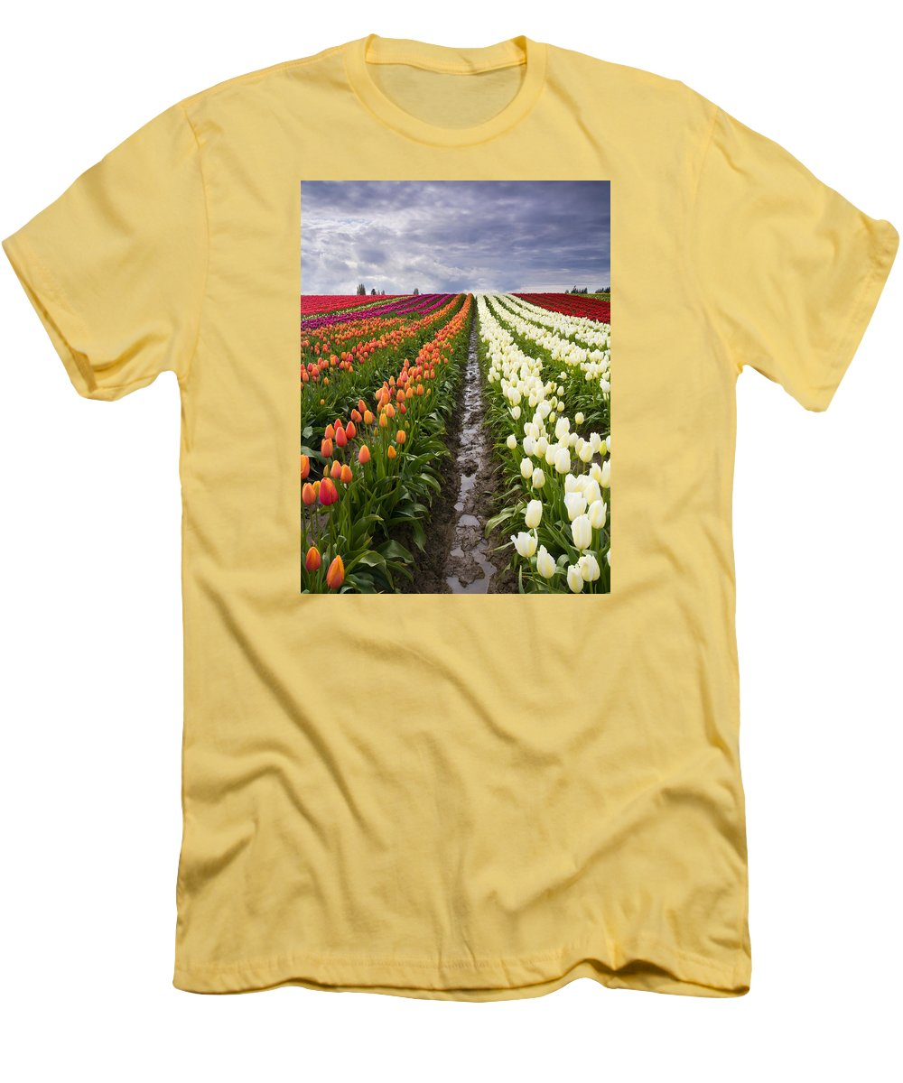 Tulips Men's T-Shirt (Athletic Fit) featuring the photograph Sea Of Color by Mike Dawson