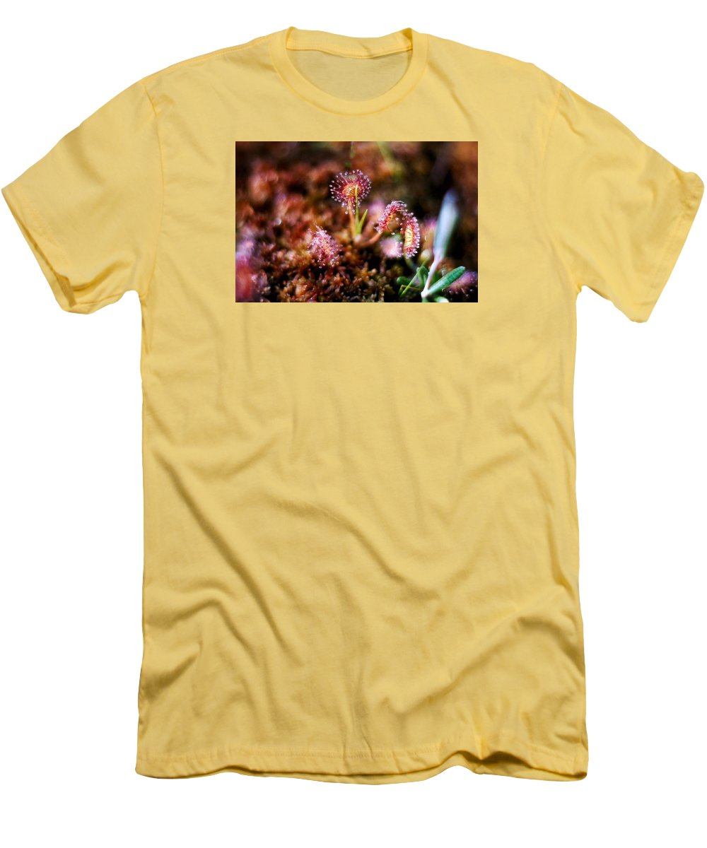 Bog Men's T-Shirt (Athletic Fit) featuring the photograph Sundew by Dave Martsolf