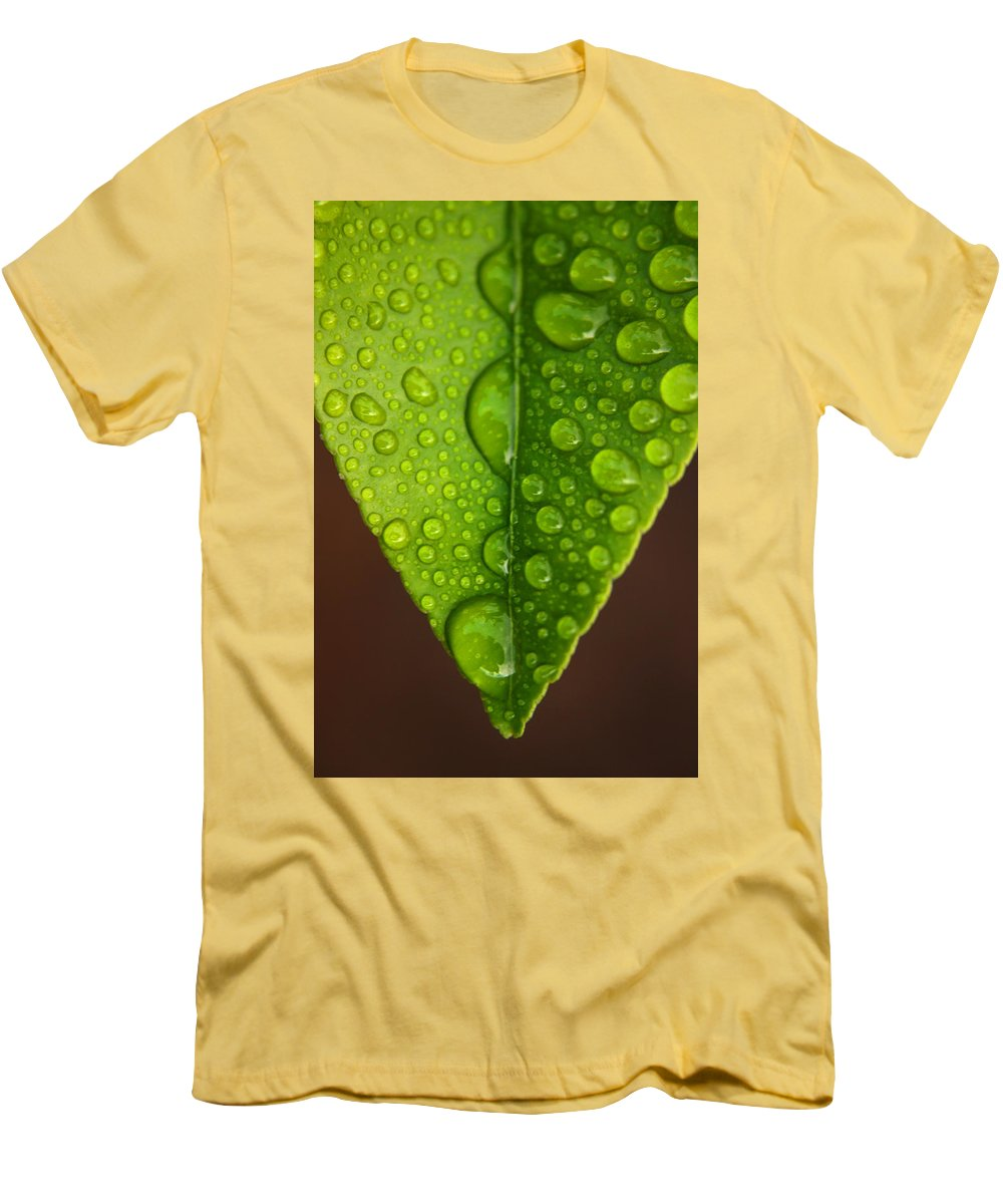 Leaf Men's T-Shirt (Athletic Fit) featuring the photograph Water Droplets On Lemon Leaf by Ralph A Ledergerber-Photography