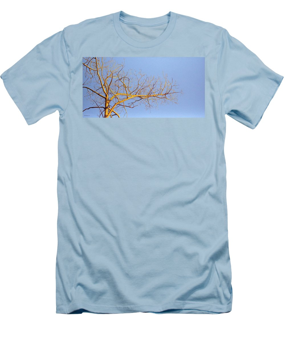 Aspen Painting Men's T-Shirt (Athletic Fit) featuring the painting Aspen In The Autumn Sun by Elaine Booth-Kallweit