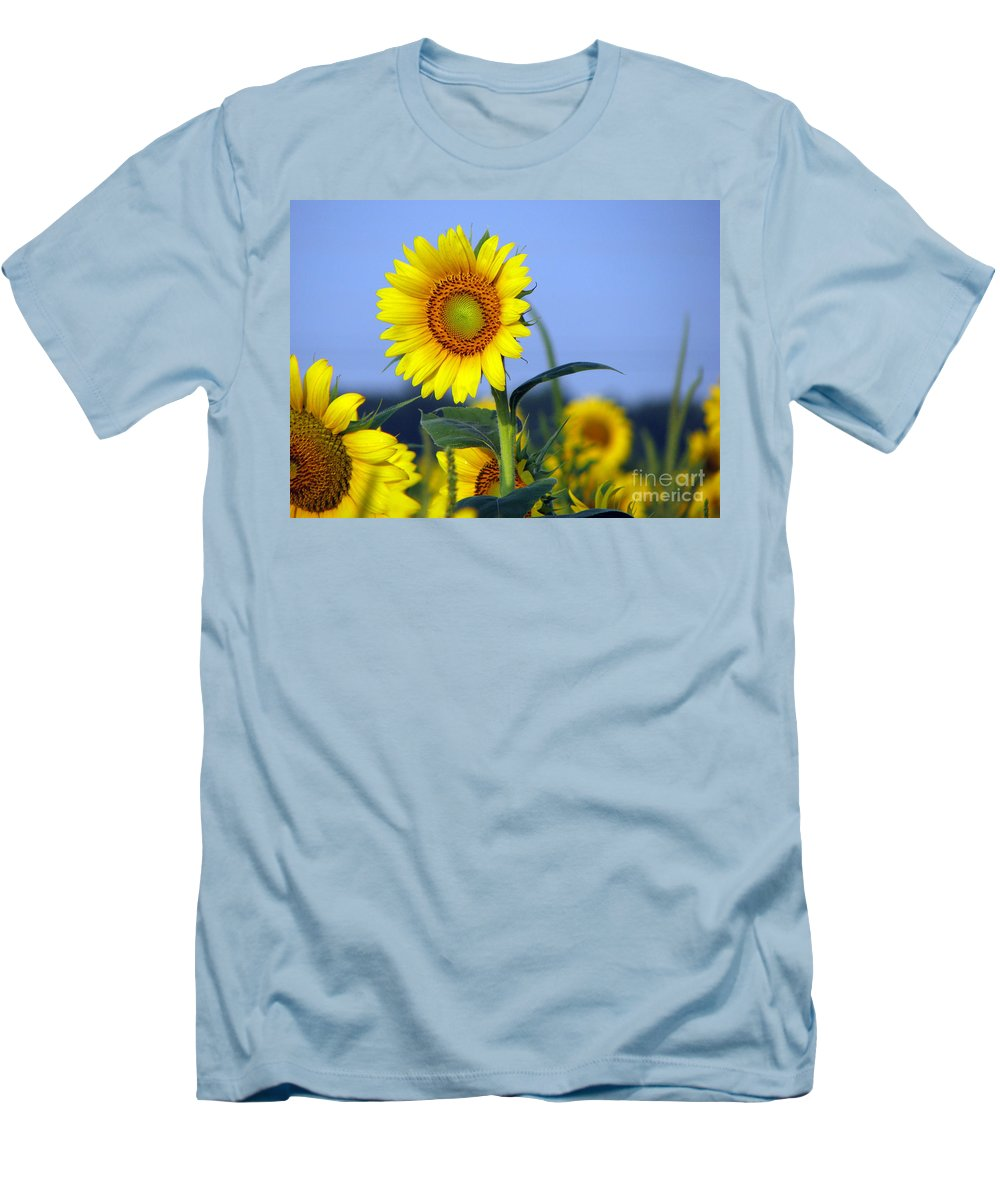 Sunflower Men's T-Shirt (Athletic Fit) featuring the photograph Getting To The Sun by Amanda Barcon
