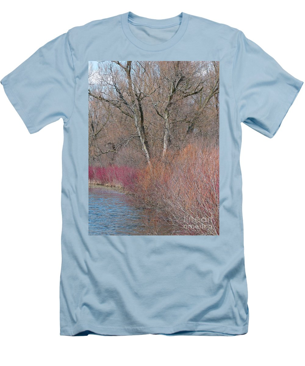 Spring Men's T-Shirt (Athletic Fit) featuring the photograph Hint Of Spring by Ann Horn