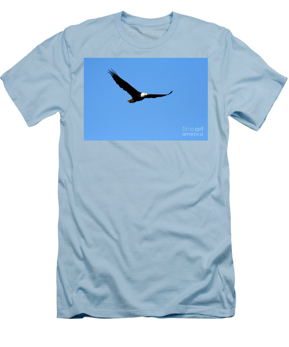 Eagle Men's T-Shirt (Athletic Fit) featuring the photograph Bald Eagle II by Thomas Marchessault
