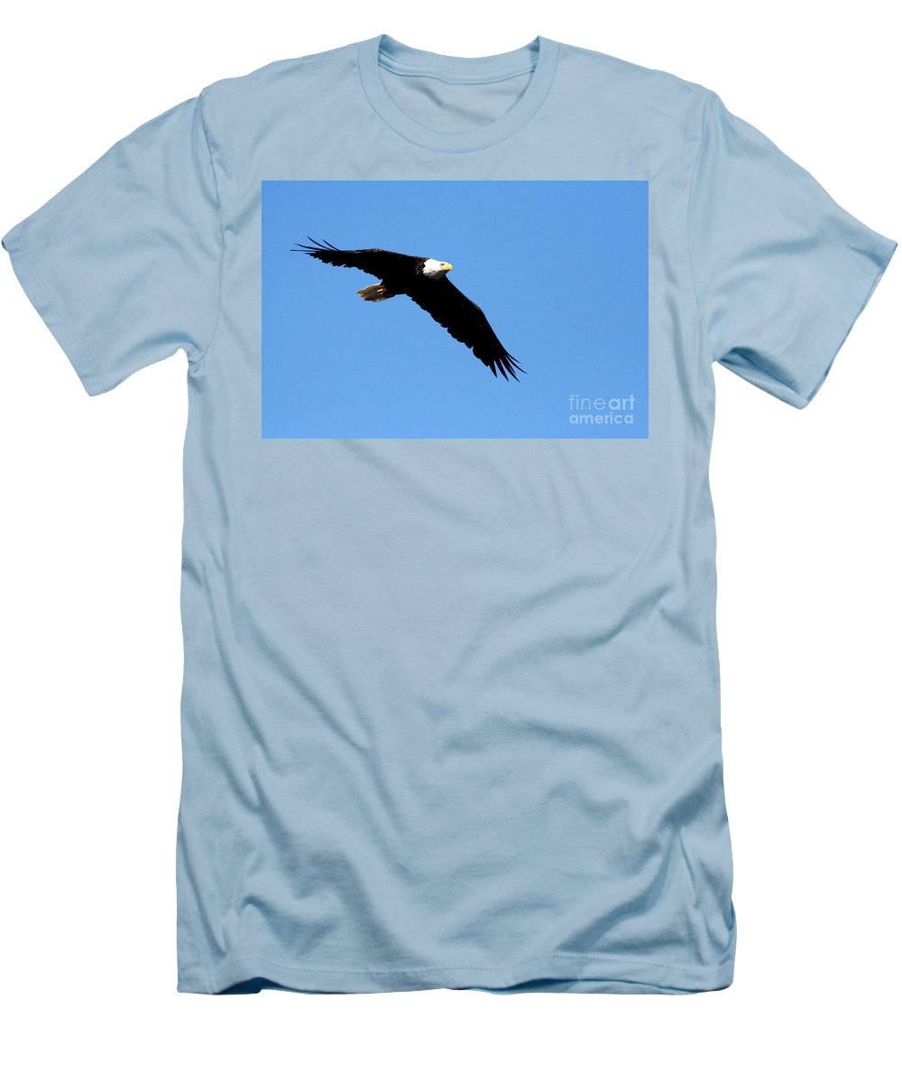 Eagle Men's T-Shirt (Athletic Fit) featuring the photograph Bald Eagle IIi by Thomas Marchessault
