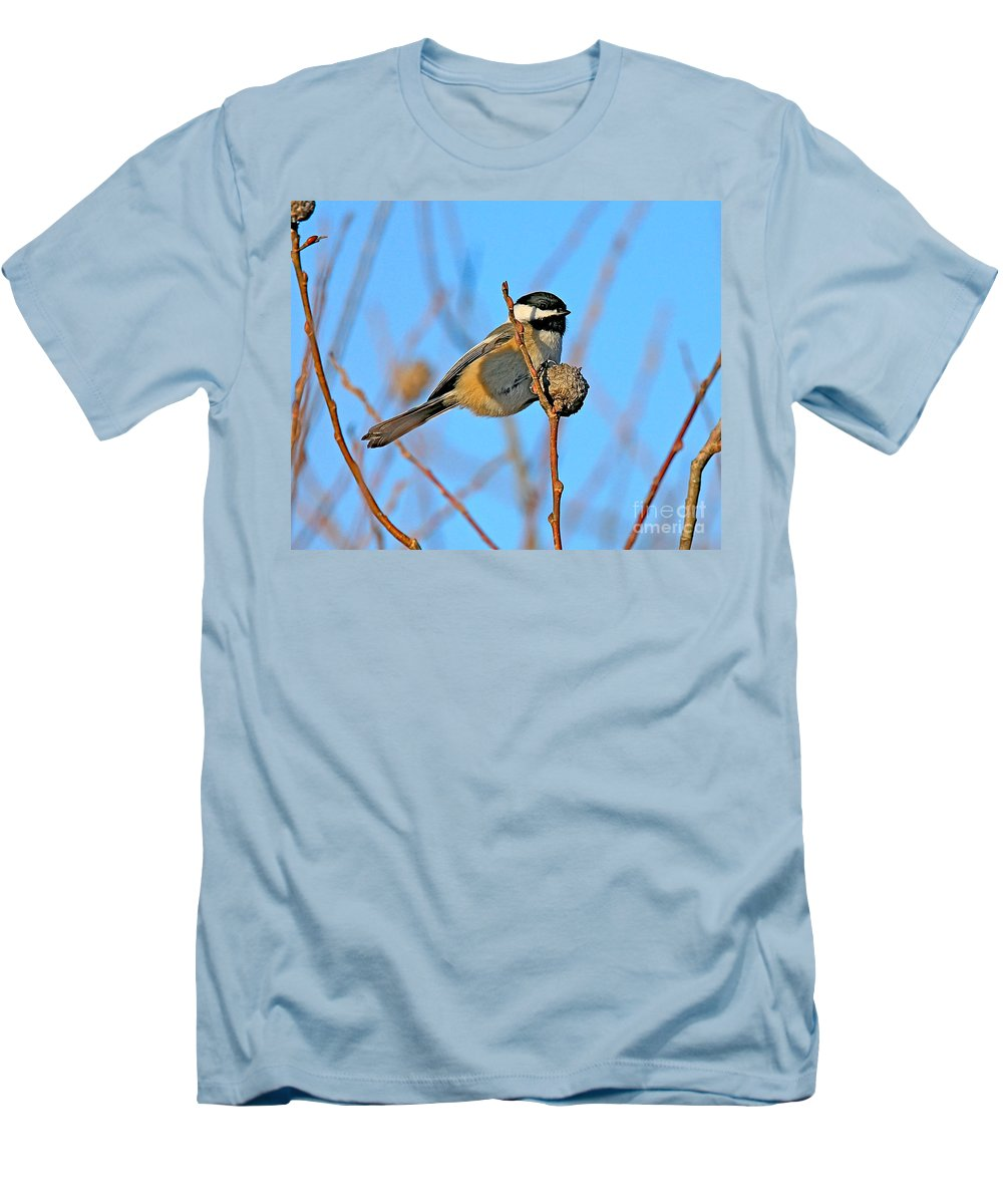 Chickadee.biid Men's T-Shirt (Athletic Fit) featuring the photograph Chickadee by Robert Pearson