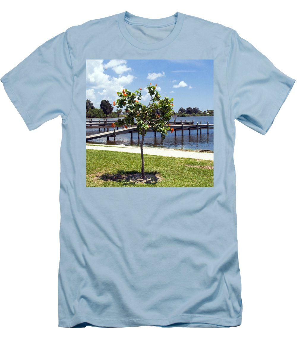 Hibiscus; Rosasinensis; Rosa; Sinensis; Rosa-sinensis; Tree; Bush; Shrub; Plant; Flower; Flowers; Fl Men's T-Shirt (Athletic Fit) featuring the photograph Hibiscus Rosasinensis With Fruit On The Indian River In Florida by Allan Hughes