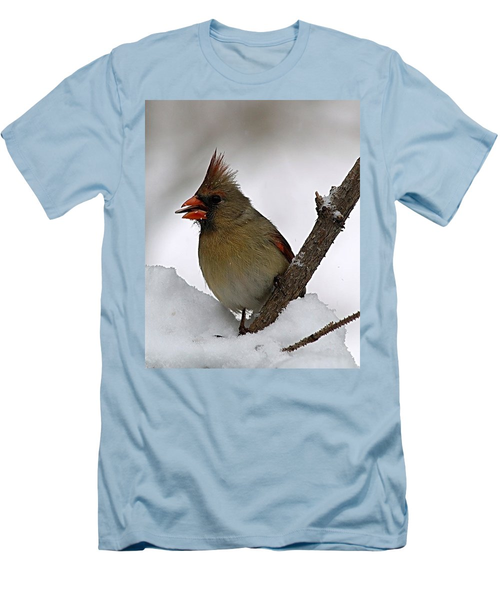 Bird Men's T-Shirt (Athletic Fit) featuring the photograph I Love Seeds by Gaby Swanson