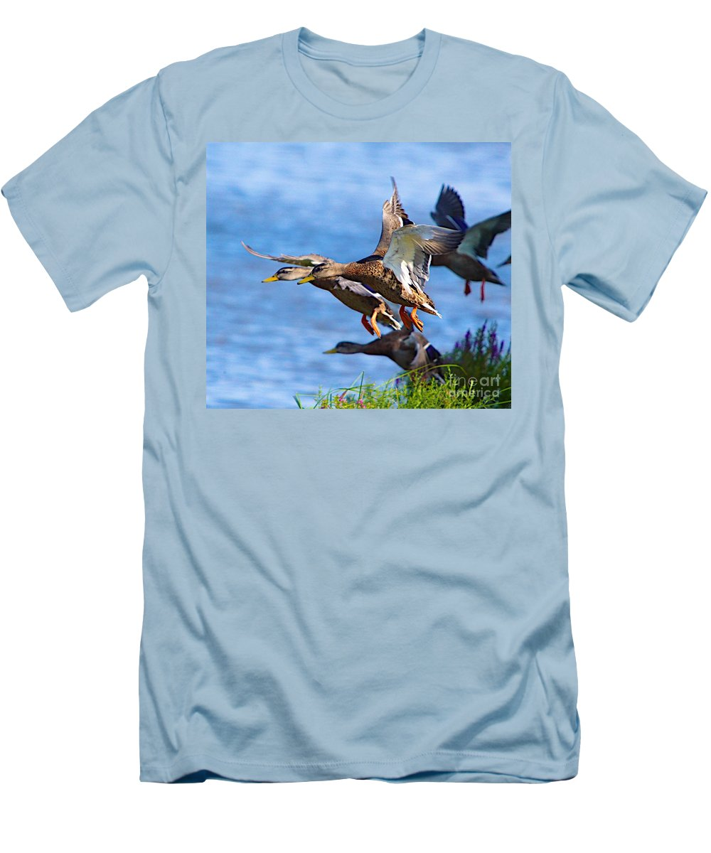 Bird Duck Water Flying Men's T-Shirt (Athletic Fit) featuring the photograph In A Rush by Robert Pearson