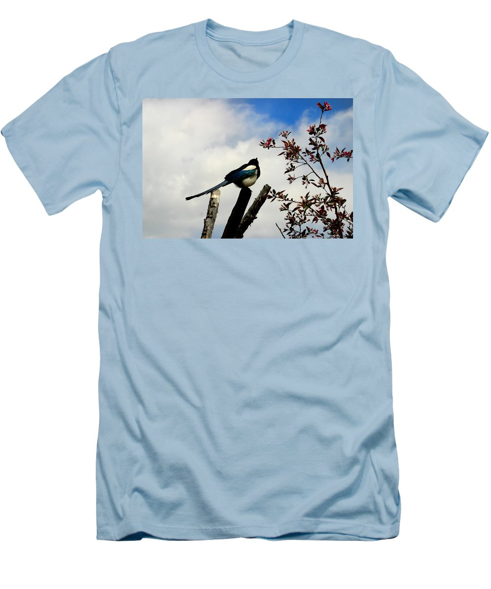 Magpie Men's T-Shirt (Athletic Fit) featuring the photograph Magpie by Anthony Jones