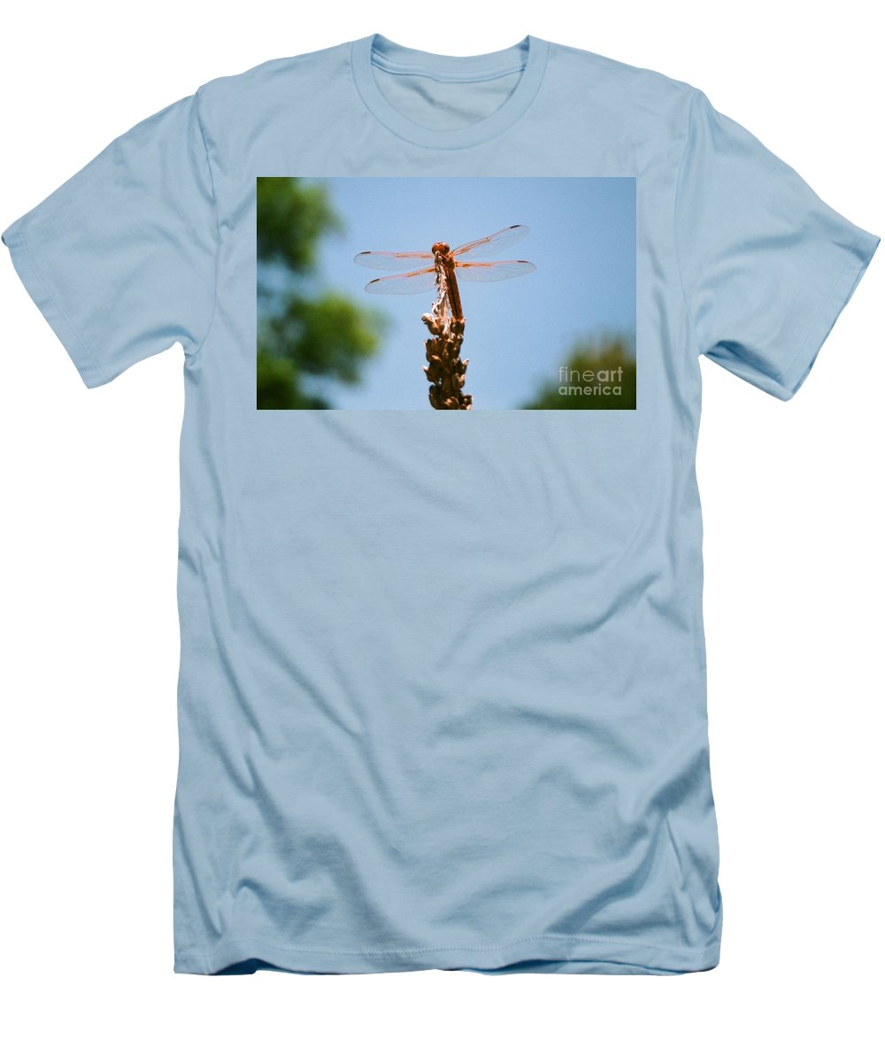 Dragonfly Men's T-Shirt (Athletic Fit) featuring the photograph Red Dragonfly by Dean Triolo