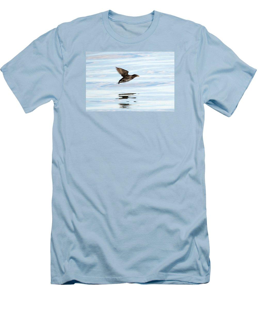 Auklets T-Shirts