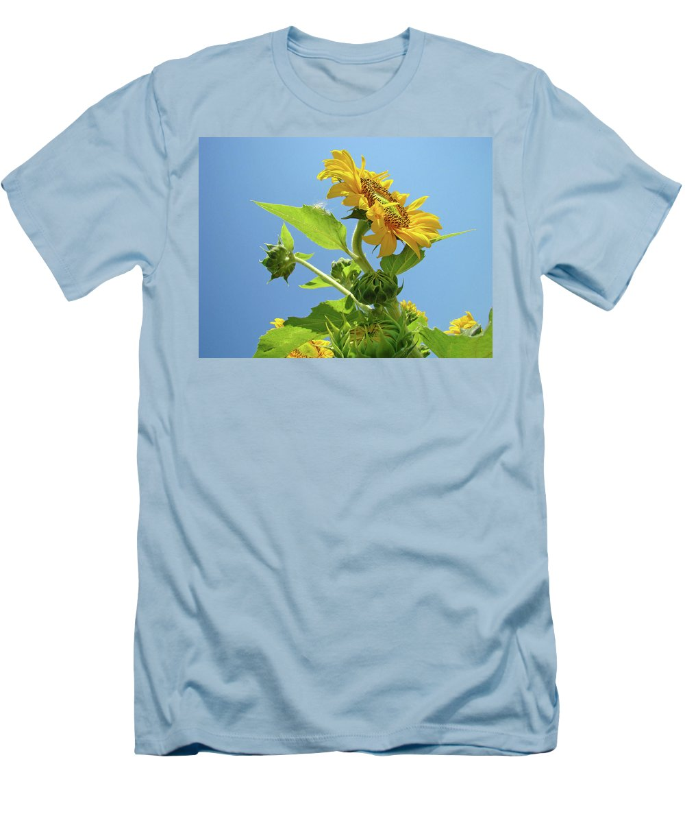 Sunflower Men's T-Shirt (Athletic Fit) featuring the photograph Sun Flower Artwork Sunflower 5 Giclee Art Prints Baslee Troutman by Baslee Troutman
