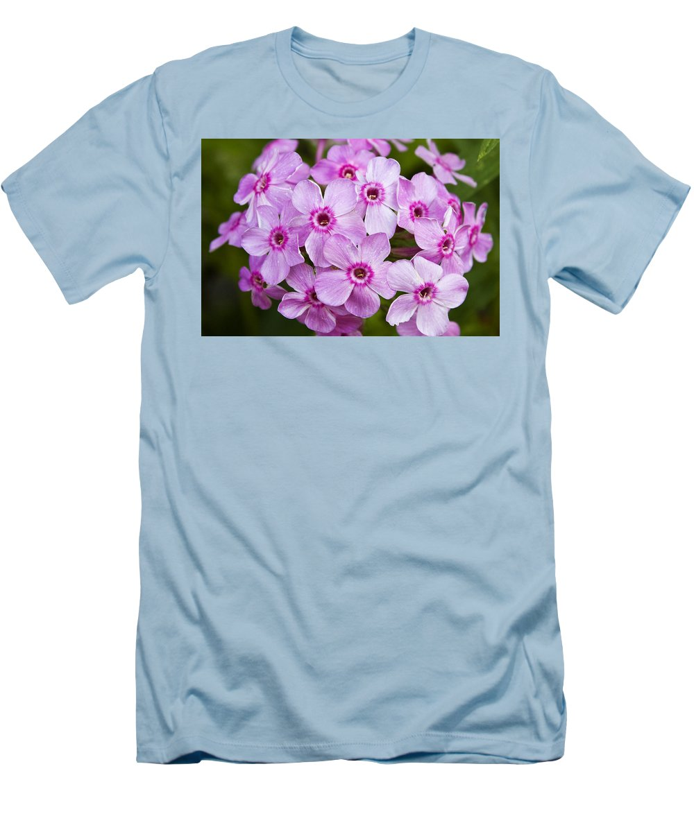Phlox Men's T-Shirt (Athletic Fit) featuring the photograph Tall Garden Phlox by Teresa Mucha