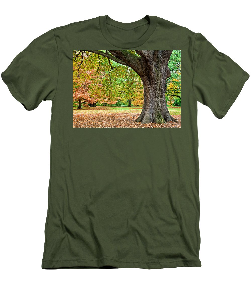 Autumn Men's T-Shirt (Athletic Fit) featuring the photograph Autumn by Dave Bowman