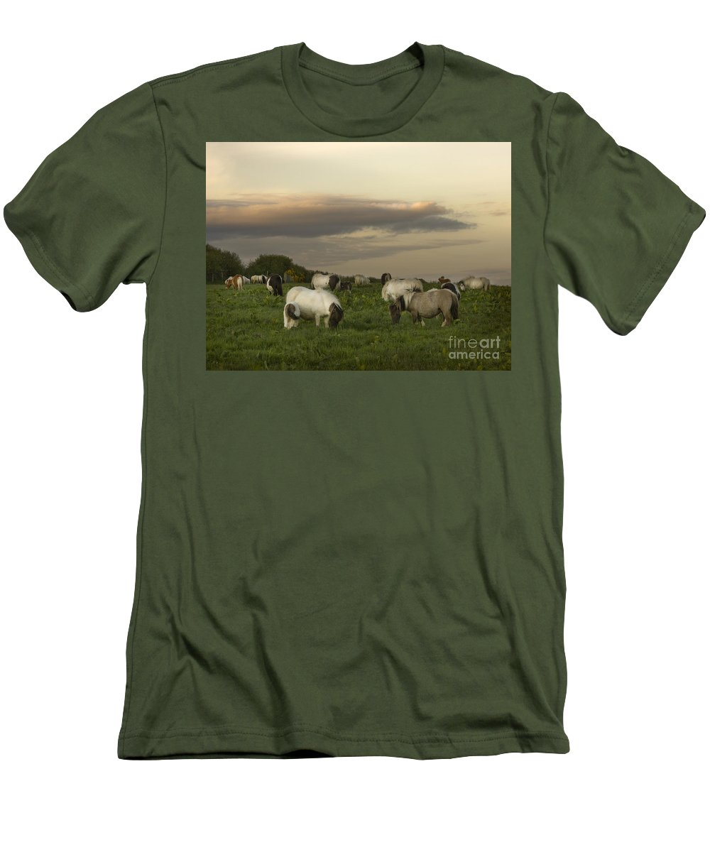 Ponies Men's T-Shirt (Athletic Fit) featuring the photograph Dining Ponies by Angel Ciesniarska