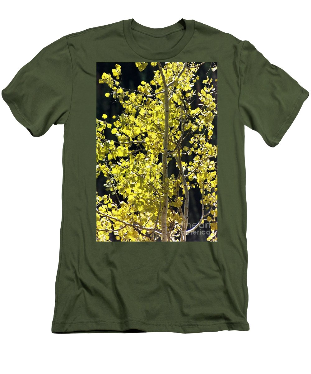 Aspens Men's T-Shirt (Athletic Fit) featuring the photograph Fall by Brandi Maher