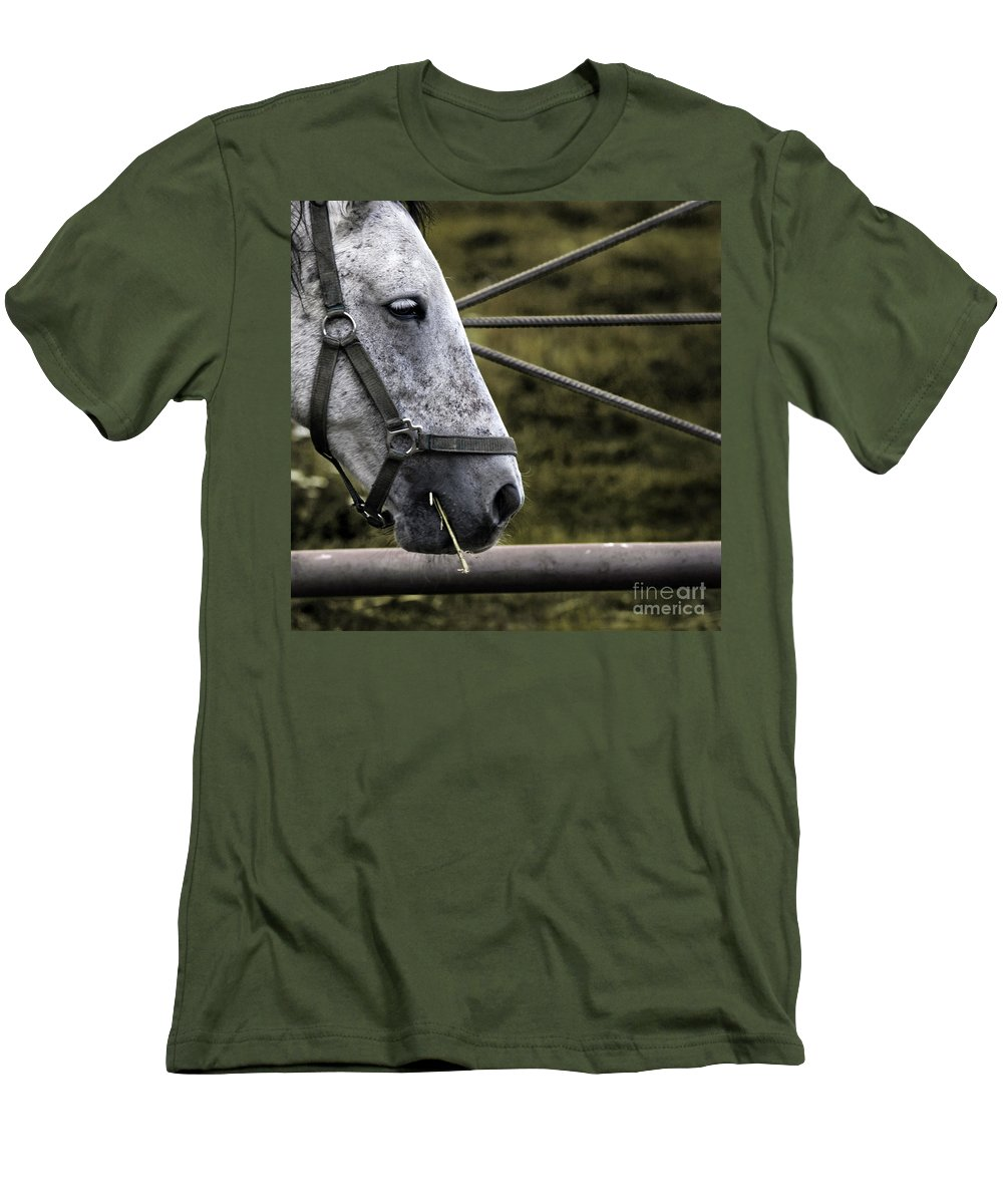 Horse Men's T-Shirt (Athletic Fit) featuring the photograph Horse's Head by Angel Ciesniarska