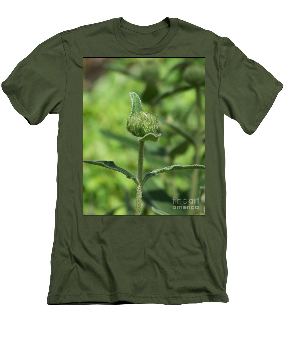 Plants Men's T-Shirt (Athletic Fit) featuring the photograph Its A Green World by Kathy McClure