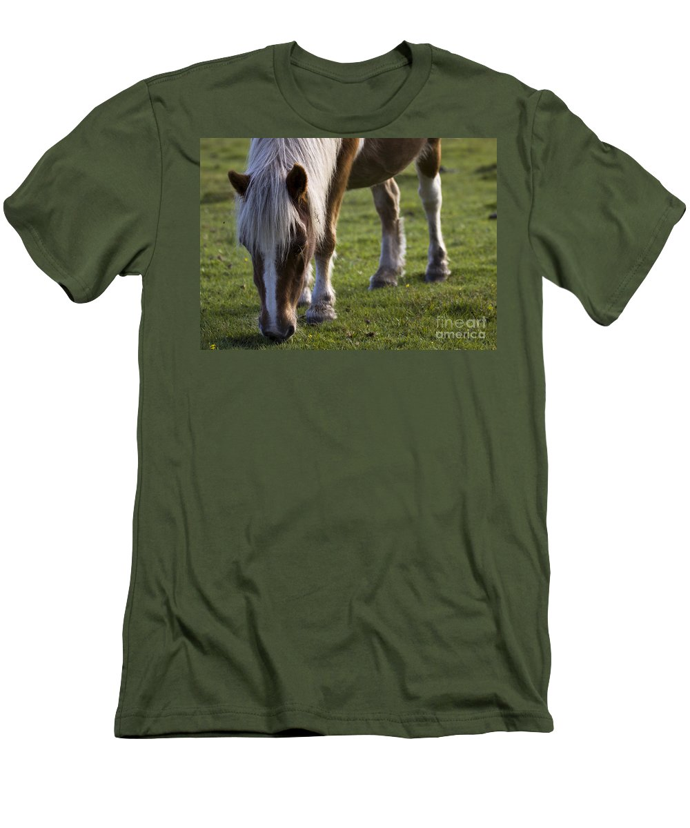 Palomino Horse Men's T-Shirt (Athletic Fit) featuring the photograph The New Forest Pony by Angel Ciesniarska