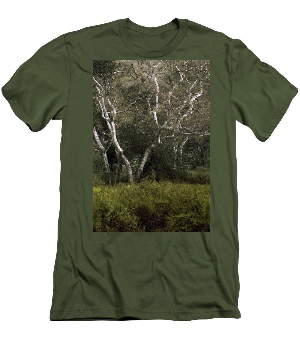 Tree Men's T-Shirt (Athletic Fit) featuring the photograph Dv Creek Trees by Karen W Meyer