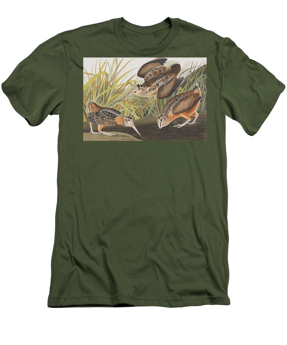 Woodcock T-Shirts