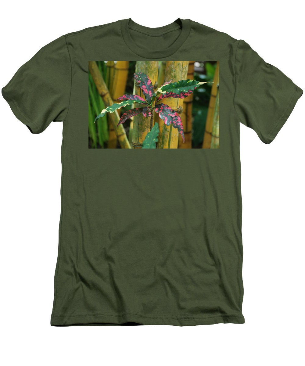 Macro Men's T-Shirt (Athletic Fit) featuring the photograph Bamboo Flower by Rob Hans