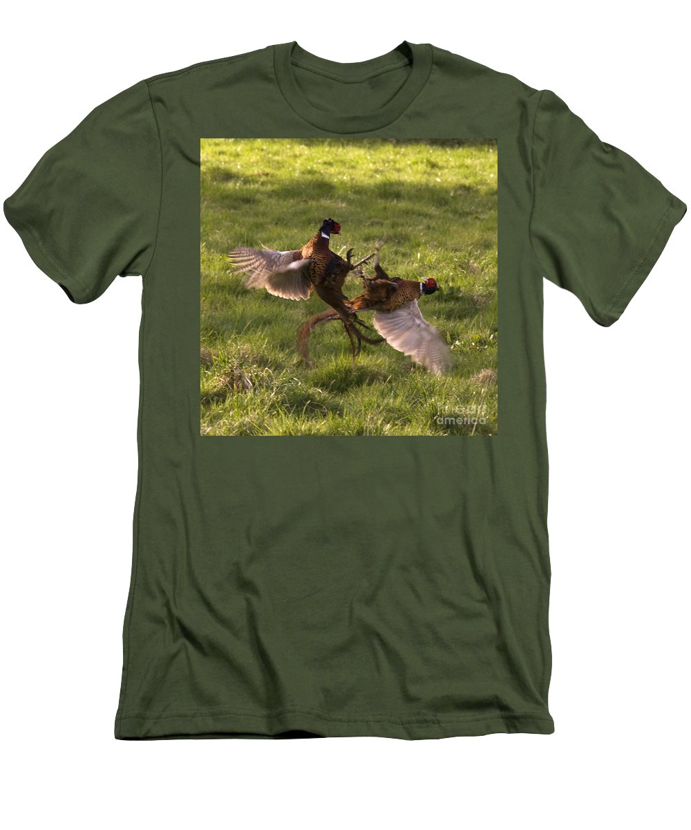 Pheasant Men's T-Shirt (Athletic Fit) featuring the photograph The Sparring by Angel Ciesniarska