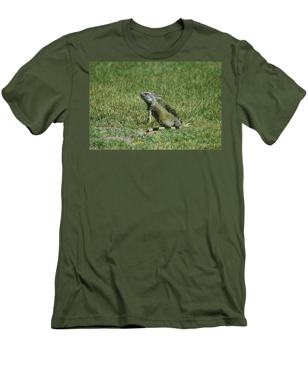Macro Men's T-Shirt (Athletic Fit) featuring the photograph I Iguana by Rob Hans