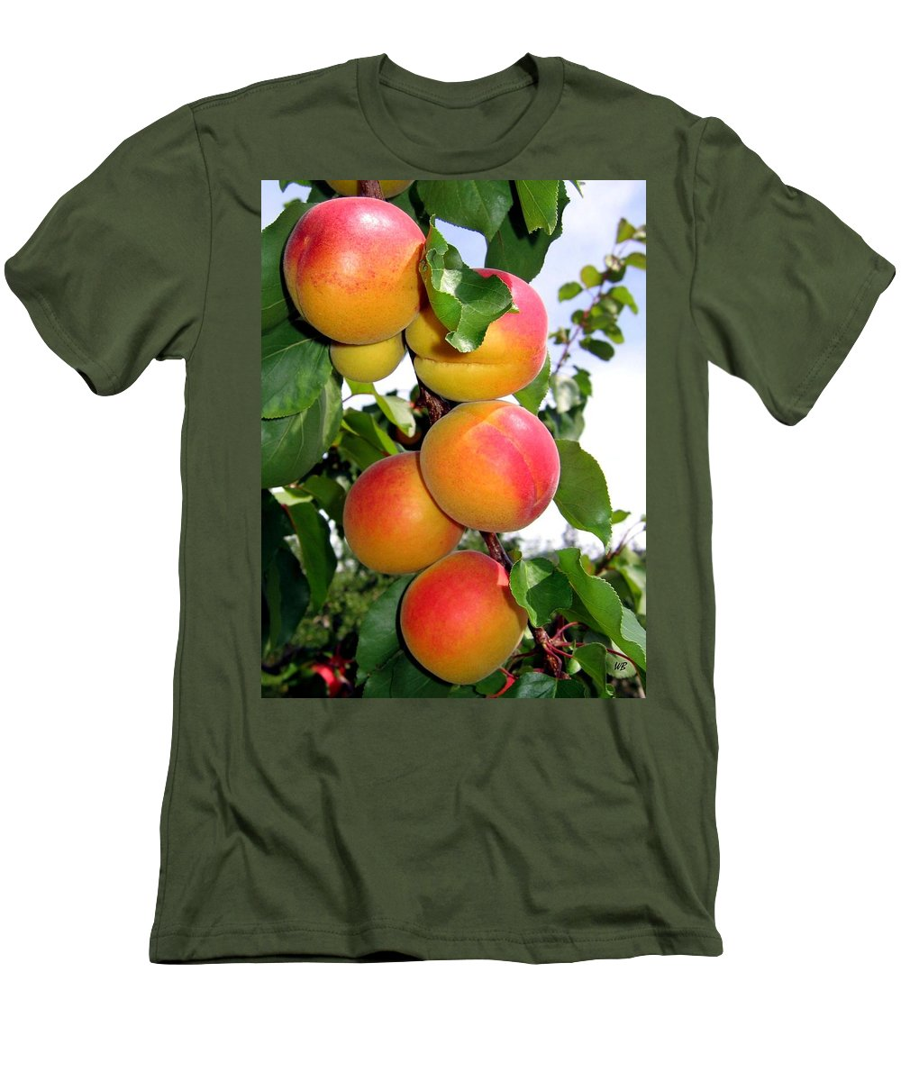 Apricots Men's T-Shirt (Athletic Fit) featuring the photograph Apricots by Will Borden