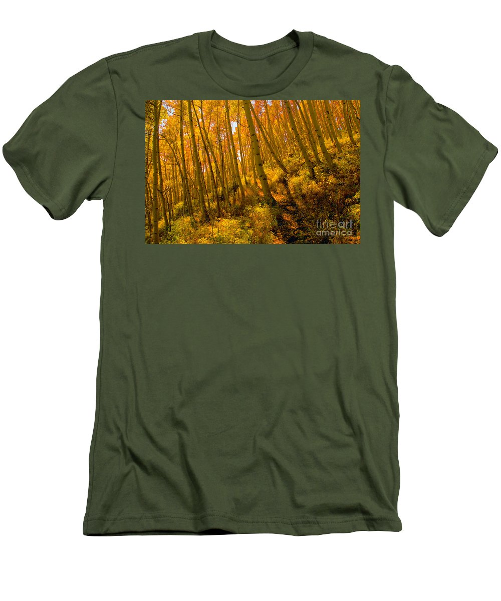 Autumn Men's T-Shirt (Athletic Fit) featuring the photograph Autumn Trail by David Lee Thompson