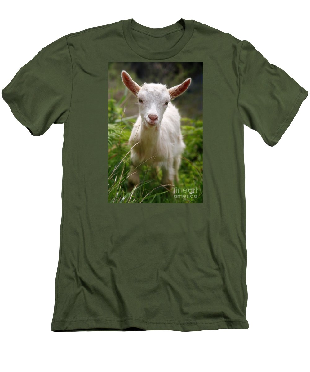 Animals Men's T-Shirt (Athletic Fit) featuring the photograph Baby Goat by Gaspar Avila