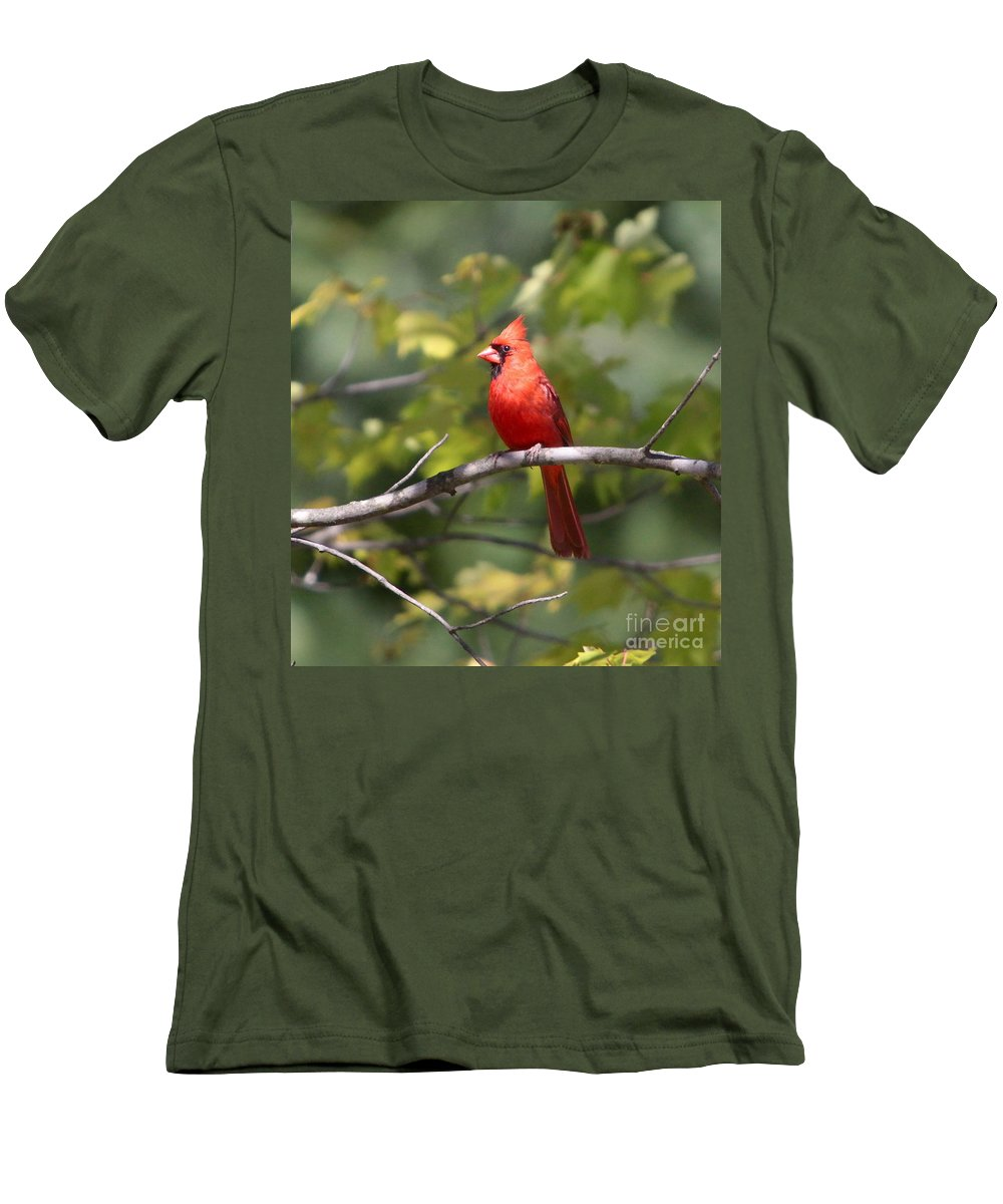 Cardinal Men's T-Shirt (Athletic Fit) featuring the photograph Big Red by Robert Pearson