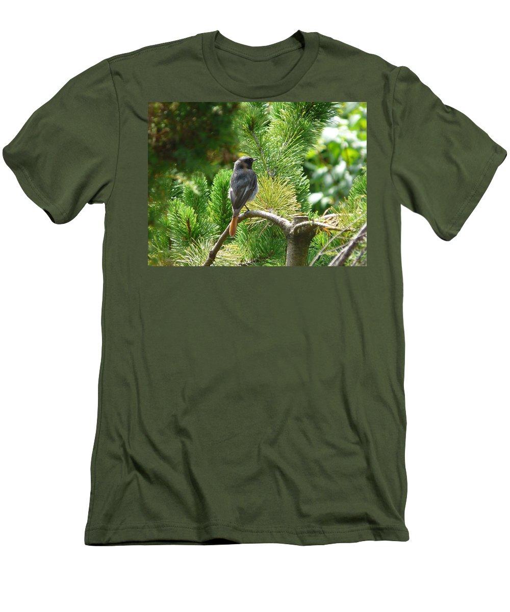 Bird Men's T-Shirt (Athletic Fit) featuring the photograph Black Redstart by Valerie Ornstein